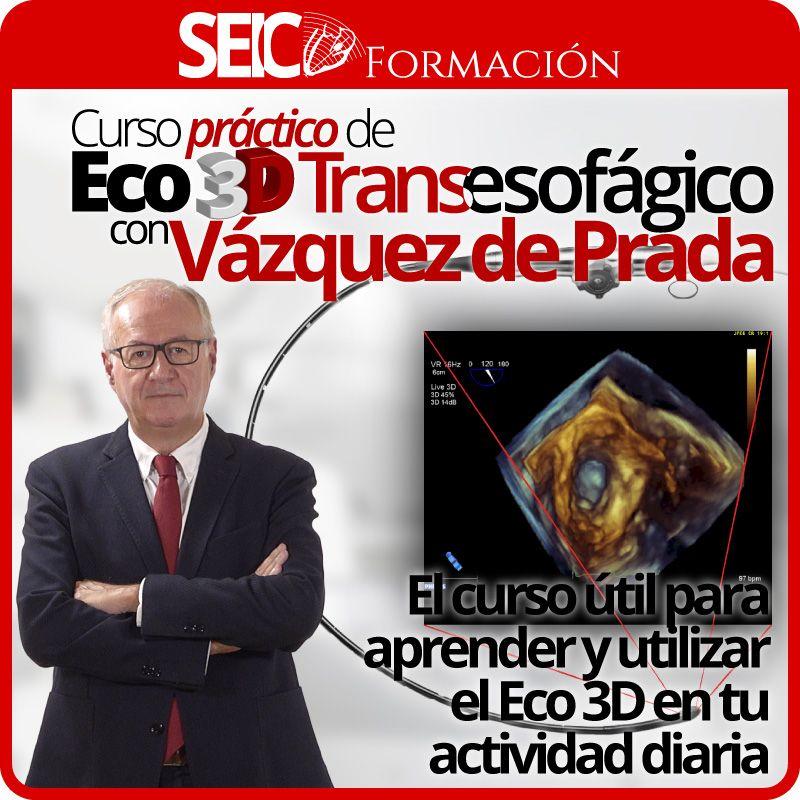 Curso Práctico de Eco 3D Transesofágico con Vázquez de Prada